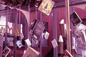 Biblioteca RU
